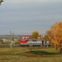 А мимо пролетают поезда. :: nadyasilyuk Вознюк