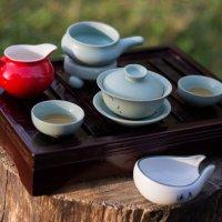 Чаепитие на природе :: Pavel Lomakin