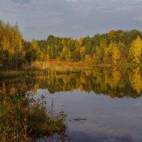 Осень золотая :: Анатолий