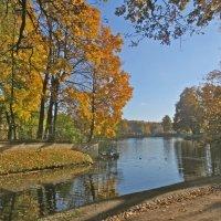 осень во всей красе :: Елена