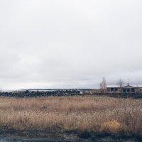 Берег Ладожского Озера. Осень. :: Christine Chuprakova