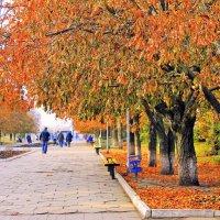 А в парке всё гуляет осень, деревья в зареве листвы. :: Валентина ツ ღ✿ღ