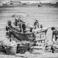 Boat - port - sea -work. :: Илья В.