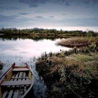 река Юг... :: ВладиМер