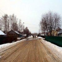 Ноябрь. Тает снег на улице Садовой... :: Николай Туркин