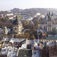 Львов. Вид с ратуши. :: Олег