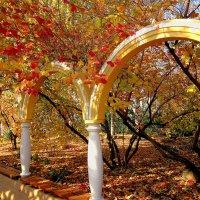 Осень в монастырском дворе ( 2 ) :: Людмила