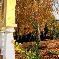 Осень в монастырском дворе ( 3 ) :: Людмила
