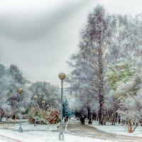 Зима скоро... :: Кирилл Богомазов