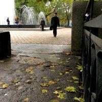 Просто осень... :: Ирина Сивовол