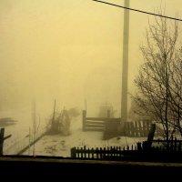 Туман...Никуда не поеду. :: Милла Корн