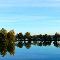 на реке....река Друть :: Татьяна Шестакович