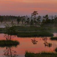 Мы в болото не пойдем, мы болото обойдём. :: Альберт Беляев