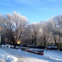 Снится мне зима.. :: Елена Семигина