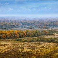 Осенний пейзаж... :: Александр Никитинский