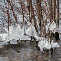 Пламя надвигающейся зимы. :: Сергей Адигамов