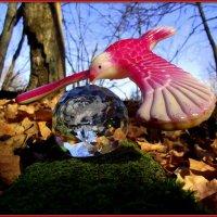 Улетает птица удачи :: Андрей Заломленков