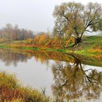 Зеркальная до звона тишина... :: Лесо-Вед (Баранов)