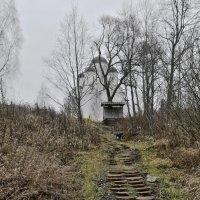Это путь проходит через нас... :: Alexandr Zykov