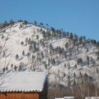 снежная гора :: Ксения