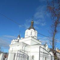 Храм Александра Невского :: Мила