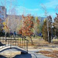 В осеннем парке :: Александр