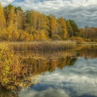 Волнительная осень :: Олег Сонин