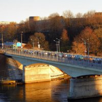 мост через границу :: linnud