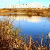 Озеро в черте города. :: Борис Митрохин