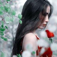 девушка с розой :: Данияр Мутанов
