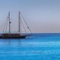Одинокий корабль :: Анастасия Долгополова