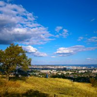 Саратов с горы :: Лариса Коломиец