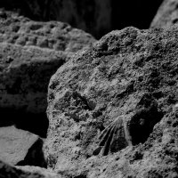 )Следы на камнях :: Александр Липецкий