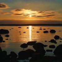 балтика :: navalon M