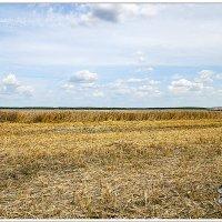 Беларусь :: Photo GRAFF