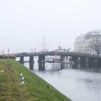 Туманное утро :: Valerii Ivanov