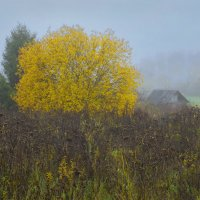 Тихая осень :: Валерий Талашов