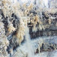Водопад (Эстония) :: Дарина Михеева