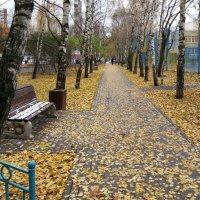 Осенние листья :: Константин Фролов
