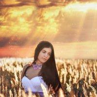 В лучах заходящего солнца :: Оксана Львова
