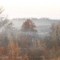 ...туманные  полосы .. :: Александр Герасенков