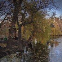 Вечер в парке :: Сергей Перфилов