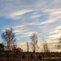 Осеннее небо :: Galina
