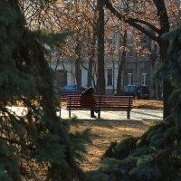 На солнышке... :: Ирина Сивовол
