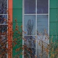 Инопланетяне даже  в окне....... :: Валерия  Полещикова