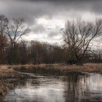 Река Тильза :: Игорь Вишняков