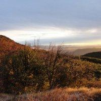 Октябрь.556м над уровнем моря :: Катя Дьяченко (Козлова)