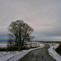 Свою дорогу сами выбираем ... :: Евгений Юрков