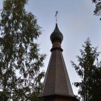Купол Казанского храма :: Галина Galyazlatotsvet