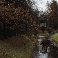 Александровский парк. Крестовый мост. :: Виктор Печуркин